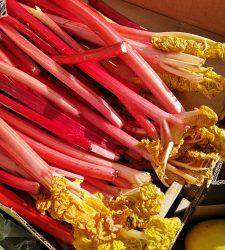 Rhubarb and thyme (time)